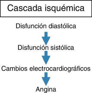 Ilustra el proceso de la cascada isquémica que depende principalmente de la disfunción diastólica que facilita la disfunción sistólica con inminentes cambios isquémicos en el miocardio llevando las alteraciones electrocardiográficas que resultan en la angina de pecho.