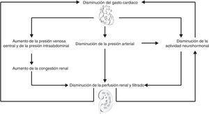 Efecto de la insuficiencia cardiaca en la función renal.