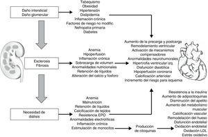 Síndrome cardiorrenal IV.