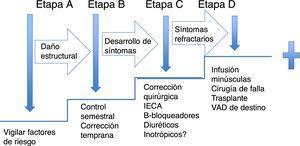 Estratificación de la falla cardíaca. Tratamiento de la falla cardíaca de acuerdo con las etapas de riesgo. La secuencia muestra el manejo médico inicial de acuerdo con la etapa en que se presenten.