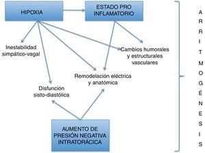 Mecanismos fisiopatológicos de las arritmias en el SAHOS.