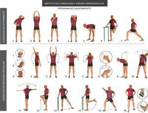 Esquema de ejercicios empleados en los pacientes del estudio durante la fase de calentamiento del programa de entrenamiento físico. Los de la línea superior corresponden a los ejercicios de estiramiento muscular realizados inicialmente, y a continuación los ejercicios de movilidad articular.