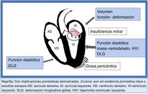 Corazón diabético. Detección temprana de disfunción miocárdica ¿Qué evaluar?.