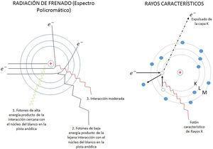 Esquemas que muestran la formación de un espectro de rayos X; a la izquierda se representa el espectro continuo (policromático) de radiación de frenado, y a la derecha la generación de los rayos característicos.
