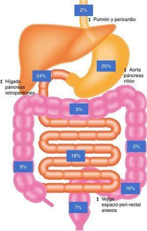Representación gráfica de la localización usual del palillo después de ingesta. ‡ Indica áreas donde no necesariamente se produce peritonitis pero puede haber lesiones a órganos adyacentes.