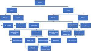 Algoritmo para la toma de decisiones en hallux varus postoperatorio.