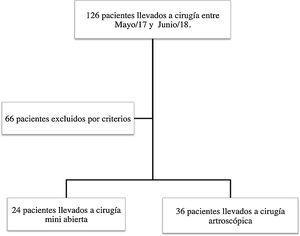Flujograma de los pacientes incluidos en el estudio.