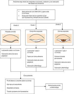 Algoritmo para la prevención y manejo de la queratopatía por exposición en la UCI3,10,17. *Ácido poliacrílico gel 2mg, carbopol 940 gel 0,2%, carbómero 0,2%, hipromelosa 3 mg+ carbómero, metilcelulosa gel.