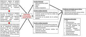 Patogénesis de la infección por COVID-19. Adaptado de Belen-Apak y Sarıalioğlu4.