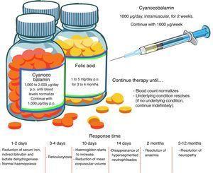 Pharmacological management of megaloblastic anaemia.