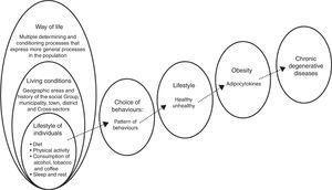 Sequence of variables for modifying risk factors for chronic degenerative diseases.