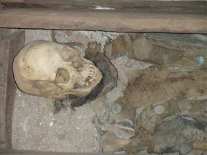 Detalle de la porción superior del esqueleto atribuido a Juan Bautista de Anza, tal y como se exhibe en la actualidad en la Iglesia de Nuestra Señora de Arizpe, Sonora (foto P. Hernández).