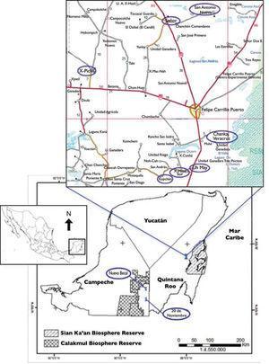 Comunidades rurales en la Península de Yucatán donde se realizó el trabajo de campo del presente estudio (febrero-abril de 2011).