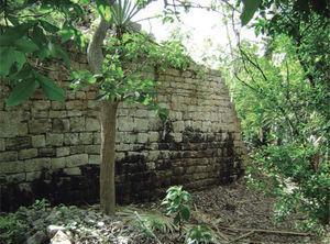Muro poniente del cuerpo inferior de la estructura 1. Foto: Miguel Covarrubias.