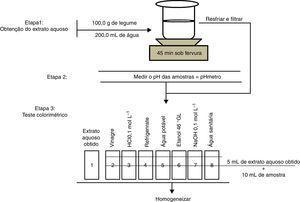 Esquema 1 Representação esquemática da metodologia utilizada.