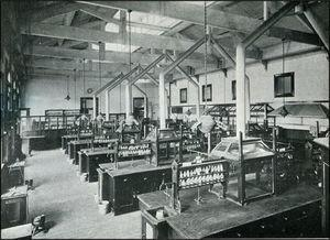 The laboratory for qualitative analysis at the University Sydney, circa 1916. Each hydrogen sulfide hood could accommodate four students, two on each side. Also note the shelves of glass-stoppered reagent bottles above each work station.