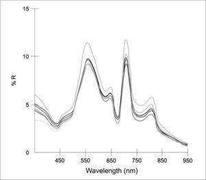 Spectral signatures from seven sampling sites in Zumpango Lake, Mexico.