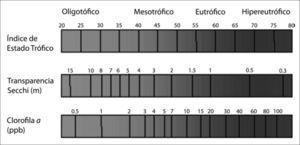 Relación entre el índice de Estado Trófico, la Transparencia Secchi y la Concentración de Clorofila a (adaptado de Carlson y Simpson, 1996).
