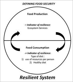 Definition of food security used in this paper. Food Security has to include both food production and food consumption, and by definition both of these have to be resilient not to compromise food production and availability for future generations. See text for details.