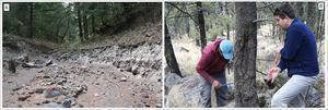 """Trabajo de campo realizado a inicios del 2008 al norte del Popocatépetl e Iztaccíhuatl en colaboración con Markus Stoffel y Michelle Bollschweiler. A) Sector medio de la barranca Huiloac, localizada al NE del Popocatépetl, es una de las más dinámicas y peligrosos del volcán. En la foto se reconocen los depósitos de lahar más recientes reportados en 1997 y 2001. B) Colecta de árboles con impactos por caída de rocas en el talud el """"Rodadero"""", al norte del Téyotl. Autor: Lorenzo Vázquez Selem. Archivo de campo, febrero de 2008."""