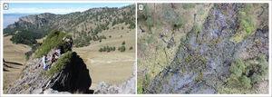 El trabajo de campo más reciente en los volcanes, de 2015 al 2017. A) Muestreo de Juniperus monticola en el valle de Alcalican (SW del Iztaccíhuatl) para elaboración de cronologías centenarias de tipo climático. En el fondo del valle se observa el depósito de flujo de escombros fechado en 2012 por dendrogeomorfología. Autor: Lorenzo Vázquez Selem. Archivo de campo, noviembre de 2014. B) Toma realizada con un dron DJI-Phamtom 4, sobre el depósito de flujo piroclástico de enero del 2001, al norte del volcán Popocatépetl. Autor: Andrés Prado Lallande. Archivo de campo, marzo de 2017.