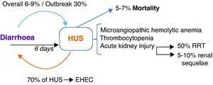 Enterohaemorragic E. coli infection and haemolytic–uraemic syndrome. HUS occurs at the 6th day after diarrhoea in EHEC enteritis; with an overall incidence of 6–9% and in STEC-O104:H4's outbreak of 30%. On the other hand, 70% of HUS cases occur in the context of EHEC enteritis. HUS triad comprises microangiopathic haemolytic anaemia, thrombocytopenia and AKI. Patients who develop AKI, 50% will require RRT and 5–10% will remain with renal sequelae. 5–7% of patients with HUS do not survive. EHEC: enterohaemorragic E. coli; HUS: haemolytic–uraemic syndrome; RRT: renal replacement therapies; STEC: Shiga-like toxin producing E. coli; AKI: acute kidney injury.