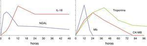 Esquema del curso temporal de 2 biomarcadores de daño renal agudo (NGAL e IL-18) en comparación con los cambios en el tiempo de biomarcadores conocidos de daño miocárdico.