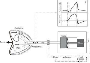 Esquema del sistema PAV. El modo PAV proporciona asistencia proporcional al esfuerzo mediante la medida continua del flujo y el volumen (1) que abandona el ventilador en dirección al paciente y que está en función de la presión muscular (Pmus) que genera el paciente y que lleva a una disminución del presión alveolar (Palv). El flujo y el volumen son amplificados (AF y AV) mediante sendos controles de ganancia ajustables (2) y la suma de ambas señales constituye la señal de control de entrada (3) que genera la respuesta en presión del motor ventilador. El motor mueve el pistón haciendo que el ventilador responda con una rápida entrega de flujo al paciente en proporción a su Palv venciendo la presión elástica y resistiva. Las curvas de presión-tiempo y flujo-tiempo resultantes del ciclo mecánico (4) muestran que el patrón de presurización es gradual, alcanzando el valor máximo al final de la inspiración siguiendo la proporcionalidad en todo momento. Nótese que el ciclado espiratorio coincide con la caída de presión inspiratoria, es decir el cese del esfuerzo inspiratorio (segunda línea discontinua), y de la morfología sinusoidal del flujo, más fisiológica, de la fase inspiratoria.