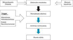 Disfunción miocárdica como substrato arritmogénico de muerte súbita.