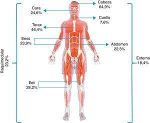 Porcentaje de lesiones codificadas de acuerdo con las diferentes áreas descritas según la Abbreviated Injury Scale.