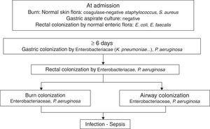 The chronology of bacterial colonization/infection in critically burn patients.
