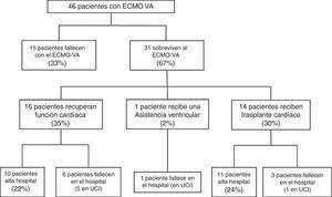Pacientes incluidos y distribución en función del tipo de retirada del soporte con membrana de oxigenación extracorpórea veno-arterial (ECMO-VA). Los resultados se expresan en número (porcentaje).