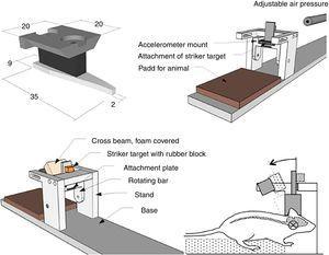 Modelo blast tipo mixto. Fuente: Risling y Davidsson55.