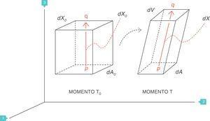 Strain=deformación (volumen corriente/capacidad residual funcional). Fuente: reproducida con permiso de Modesto-Alapont V, et al.5.