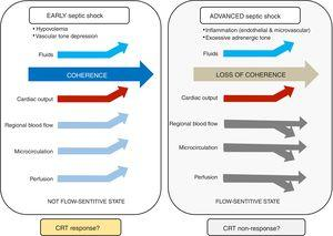Concept of hemodynamic coherence in septic shock.