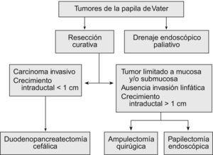 Opciones terapéuticas en los tumores de la papila de Vater.