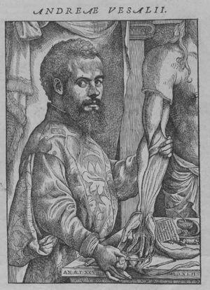 Andreae Vesalio.