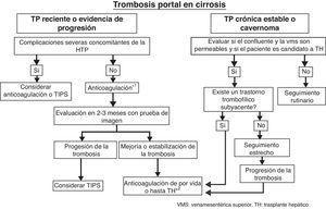 Algoritmo propuesto para el manejo de la TP en pacientes con cirrosis. *1 Deben considerarse varios factores: la extensión de la trombosis, la evidencia de progresión de la trombosis, el hallarse el paciente en lista de espera de TH o ser potencial candidato al mismo. *2 Considerar mantener la anticoagulación tras el TH si existe un factor protrombótico de alto riesgo que no se corrige con el TH. VMS: vena mesentérica superior&#59; TH: trasplante hepático. Tomada de Gastroenterol Hepatol. 2012&#59;35 (Espec Congr 1):60-8.