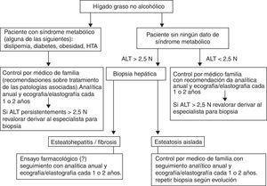 Actitud y seguimiento ante un paciente con HGNA. ALT: alanino aminotransferasa&#59; HGNA: hígado graso no alcohólico&#59; HTA: hipertensión arterial.