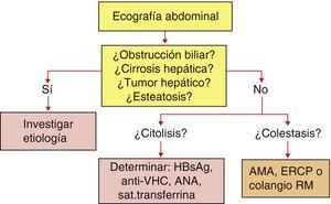Diagnóstico de una elevación enzimática en los ancianos.