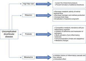 Treatment of uncomplicated diverticular disease. Mechanisms of action.