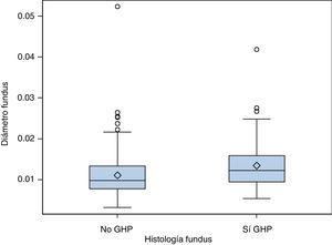 Relación entre el diámetro de los vasos y la histología en fundus.