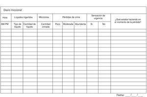 Diario miccional. Tomado y modificado de Brenes Bermúdez et al.34.