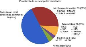 Prevalencia de las nefropatías hereditarias al final del estudio (número de pacientes y porcentaje). BB: síndrome de Bardel-Bieldt; Cis: cistinuria; ET: esclerosis tuberosa; HAD: hipocalcemia autosómica dominante; HmAD: hipomagnesemia autosómica dominante; MHF: microhematuria familiar; NIgAF: nefropatía IgA familiar; RHLX: raquitismo hipofosfatémico ligado a X; SAAR: síndrome de Alport autosómico recesivo; SALX: síndrome de Alport ligado a X; SB: síndrome de Bartter; SD: síndrome de Dent; SG: síndrome de Gitelman.