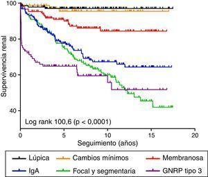 Curva de supervivencia renal de las diferentes enfermedades biopsiadas.