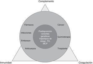 Elementos de la MAT, proceso complejo multifactorial.