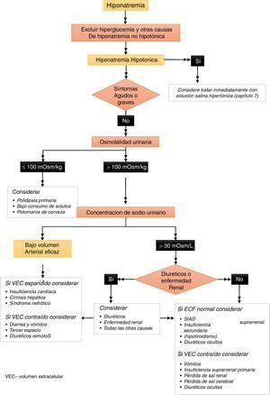 Algoritmo para el diagnóstico de hiponatremia. Figura 6 del documento completo en línea. Nota importante: la referencia de capítulos en la figura se refiere al documento de la guía completa en línea1.