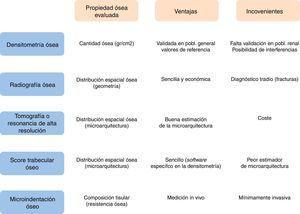 Comparación entre las diferentes pruebas diagnósticas para estimar la salud ósea.