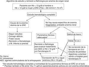 Algoritmo de estudio y remisión a Nefrología por anemia de origen renal.