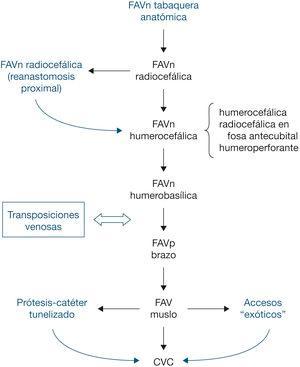 – Orden de realización del acceso vascular. CVC: catéter venoso central; FAVn: fístula arteriovenosa nativa; FAVp: fístula arteriovenosa protésica. En negro: secuencia principal.